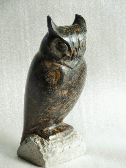 horned owl,angle front